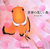 世界の美しい魚