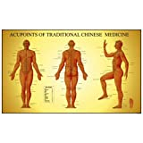 Acupoints of Tradition Chinese Medicine Chart, Male