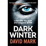 Dark Winterby David Mark