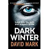 Dark Winterby David Mark