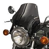 Windscreen Puig NAKED for Suzuki GS 500 E (GS500E) toned