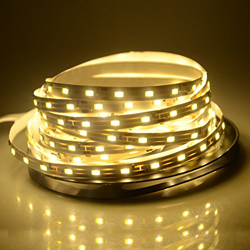 WenTop Led Strip Lights Waterproof Led Rope Light 12v SMD 3528 16.4 Ft (5M) 300leds 60leds/m Warm White Flexible Tape Light for Kitchen, Closet, Mirror, Ceiling, Indoor and Outdoor - No Power Supply
