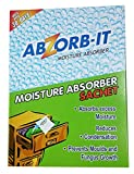 ABZORB-IT Sachets
