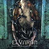 Gravitation Control System by Elvaron