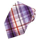 Absolute Stores Boys Prep Purple Uptown Cotton Plaid Tie