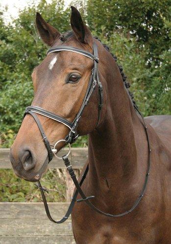Harry's Horse Kombinierte Trense schwarz, weiss
