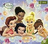 2011  Fairies  Wall Calendar
