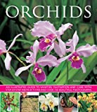 Orchids: An illustrated guide to varieties, cultivation and care, with step-by-step instructions and over 150 stunning photographs