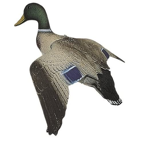 Body Flying Mallard Duck Decoy : Hunting Decoys : Sports & Outdoors