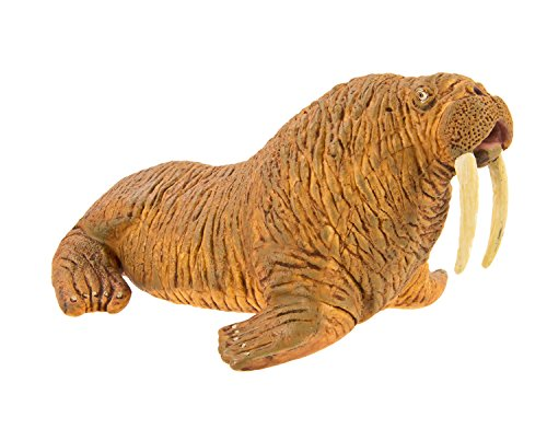 Safari Ltd Wild Safari Sea Life - Walrus - Realistic Hand Painted Toy Figurine Model - Quality Construction from Safe and BPA Free Materials - For Ages 3 and Up