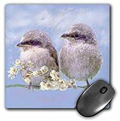 3dRose LLC 8 X 8 X 0.25 Inches Digital Oil Painting Mouse Pad (mp_23825_1)