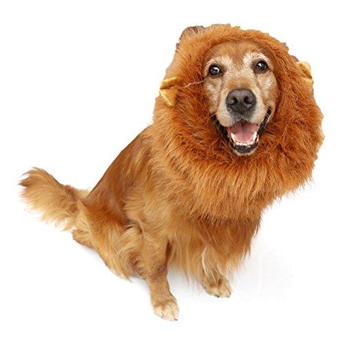 OHF ペットが ライオンに 大変身 ウィッグ 愛犬 愛猫 中型犬 大型犬用 コスプレ かつら