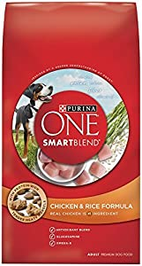 Purina ONE SmartBlend Chicken & Rice Formula Dry Dog Food (31.1 lb. Bag (Pack of 2))