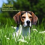 Beagles Calendar - 2015 Wall calendars - Dog Calendars - Monthly Wall Calendar by Magnum
