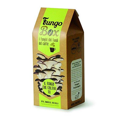 FungoBox: il Kit per Coltivare in Casa Funghi Ostrica (Commestibili e Buoni), dai Fondi del Caffè espresso - Un regalo ideale
