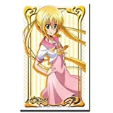 Bushiroad Sleeve Collection HG (high-grade) Hayate the Combat Butler Vol.553!