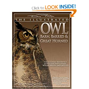 The Illustrated Owl: Barn, Barred, &amp; Great Horned: The Ultimate Reference Guide for Bird Lovers, Artists, and Woodcarvers (The Denny Rogers Visual Reference series)