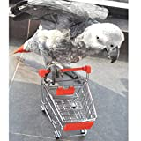 1-x-Mini-Shopping-Cart-for-Bird-Intelligence-Training-Random-One