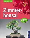Zimmerbonsai