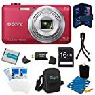 Sony DSC-WX80/R DSC-WX80 WX80 DSCWX80R 16 MP Digital Camera with 2.7-Inch LCD (Red) Bundle with 16GB SD Card, Spare Battery, Case, and Mini Tripod, SD Card Reader and MORE!