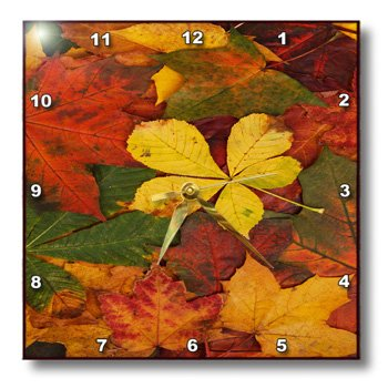 3dRose dpp_36780_1 Rustic Autumn Leaves Wall Clock, 10 by 10-Inch