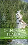 img - for Opening to Healing book / textbook / text book
