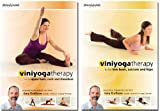 Viniyoga Therapy Complete Back Care [DVD] [Import]