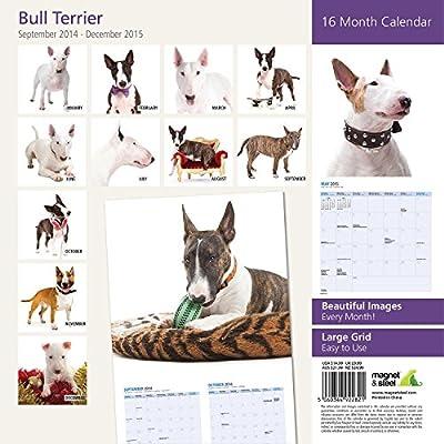 Bull Terrier 2015 Wall Calendar