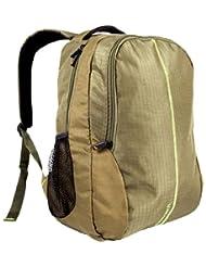 Fastrack Polyester Olive Green Laptop Bag (AC016NGR02)