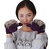 (Baoxinjp) レディース ニット 可愛い 手袋 冬用グローブ 防寒手袋 ミトン アニメ ハリネズミ パープル