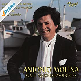 Amazon.com: Toros y Coplas: Antonio Molina: MP3 Downloads