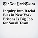 Inquiry Into Racial Bias in New York Prisons Is Big Job for Small Team | Michael Winerip,Michael Schwirtz