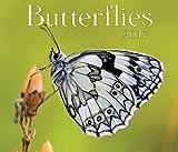 img - for Butterflies 2017 book / textbook / text book