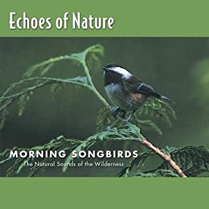 Echoes of Nature: Morning Songbirds