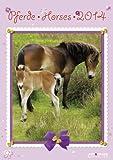 Pferde 2014
