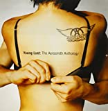 Young Lust: The Aerosmith Anthology (2 CD)