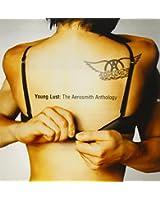 Young Lust: The Aerosmith Anthology (2 CD)