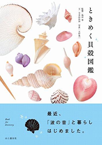 美しすぎて、呪われそう!『ときめく貝殻図鑑』最近、「波の音」と暮らしはじめました。
