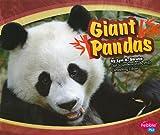 Giant Pandas (Asian Animals)