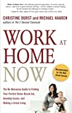 img - for Work at Home Now: The No-nonsense Guide to Finding Your Perfect Home-based Job, Avoiding Scams, and Making a Great Living book / textbook / text book