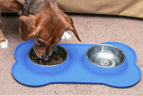 fossa stainless steel double dish no spill pet