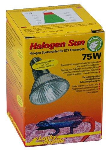 lucky-reptile-hs-75-halogen-sun-75-w-warmestrahler-fur-e27-fassung