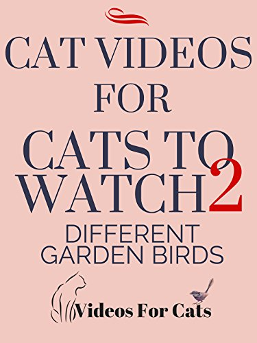 Cat Videos for Cats to Watch 2 Different Garden Birds