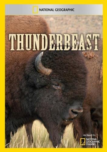 Thunderbeast [Edizione: Francia]