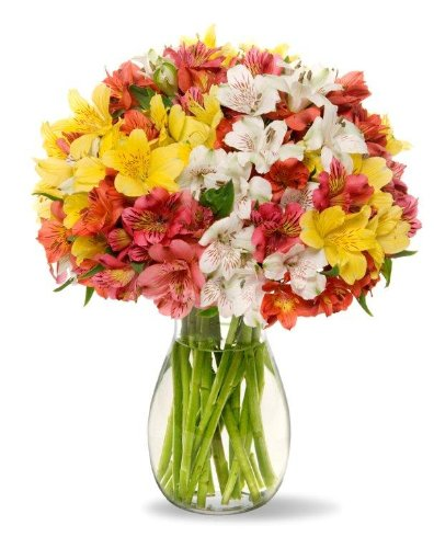 benchmark-bouquets-assorted-peruvian-lilies-with-vase