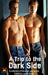 A Trip To The Dark Side - an Xcite Books collection of five erotic m/m stories (Bad Boys)