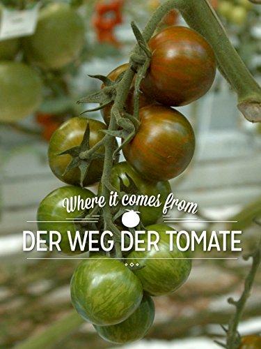 where-it-comes-from-der-weg-der-tomate