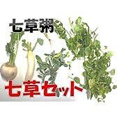 七草セット  パック詰め  1月5日(火)発送限定   七草粥に!
