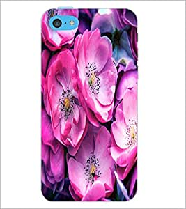 PrintDhaba Flowers D-2837 Back Case Cover for APPLE IPHONE 5C (Multi-Coloured)