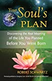 img - for Your Soul's Plan: Discovering the Real Meaning of the Life You Planned Before You Were Born book / textbook / text book